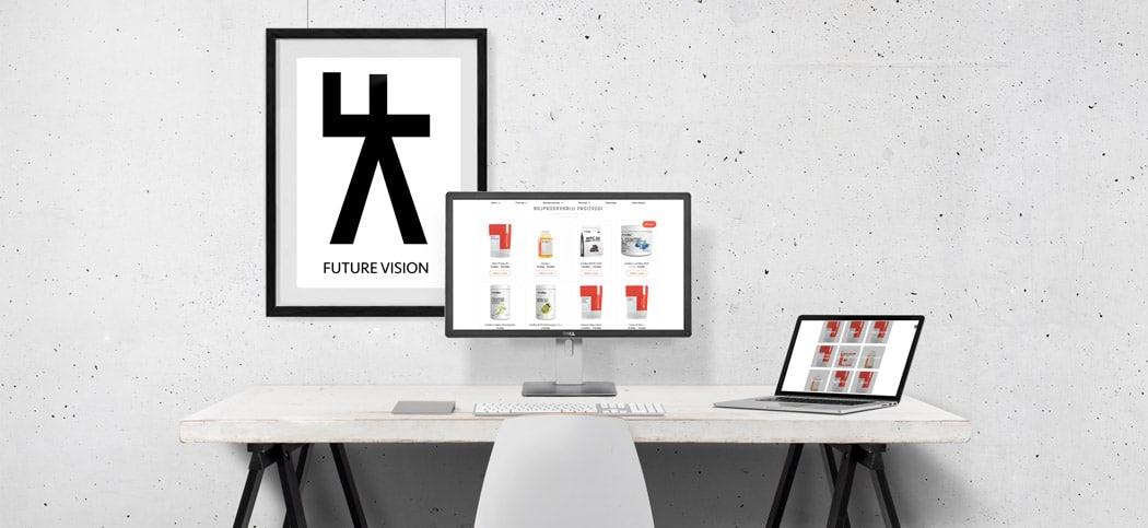 Optimizacija postojecih stranica Future Vision